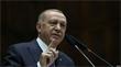 """""""أوصلته لمرتبة الأنبياء"""".. الإفتاء المصرية: 90% من الفتاوى التركية لدعم إردوغان"""